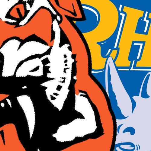 rhinos-header.jpg