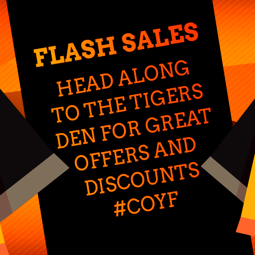 article-flash-sales.png